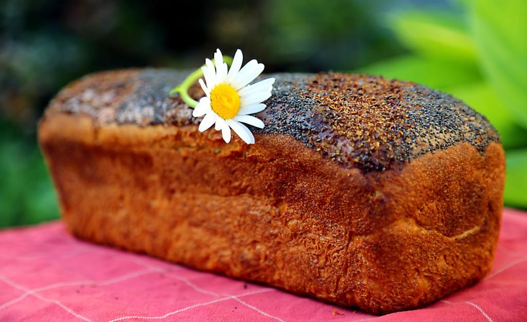 semínkové sypání se dá použít i jako dekorace buď jen zvrchu, nebo můžete před kynutím vysypat formu úplně celou
