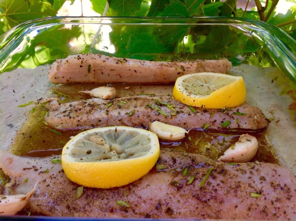 ryby naložené v balsamico octu, olivovém oleji, citronu, rozmarýnu a pár stroužky česneku