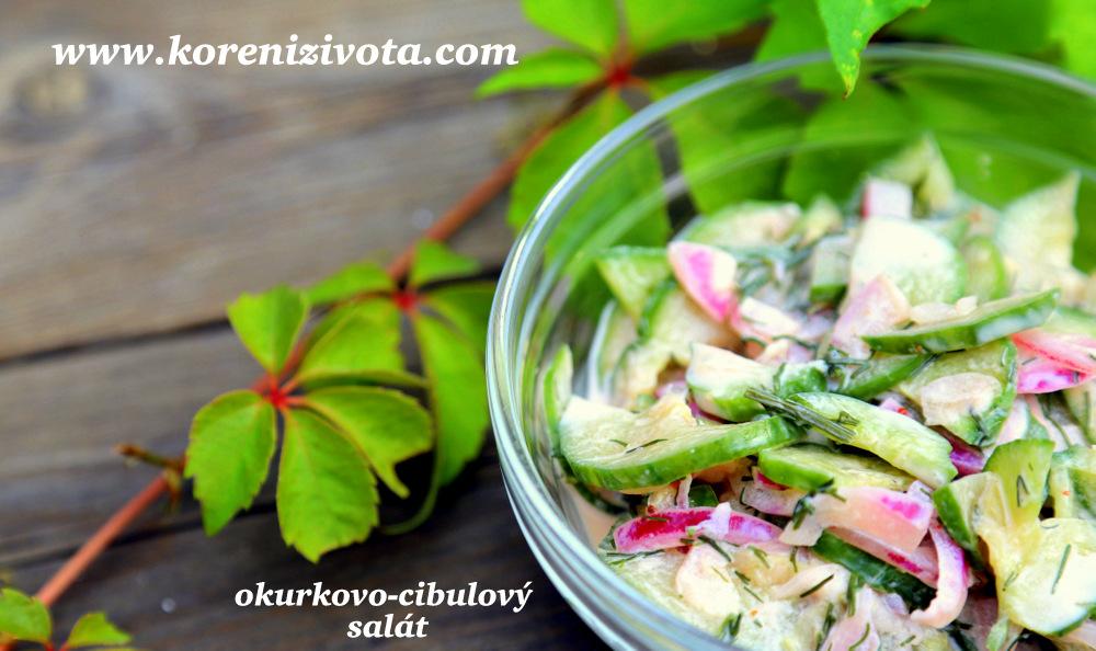 okurkovo-cibulový salát se zakysankou