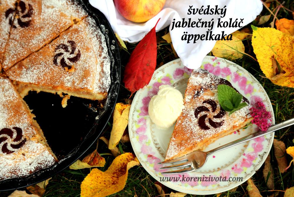 švédský jablečný koláč äppelkaka s kopečkem vanilkové zmrzliny