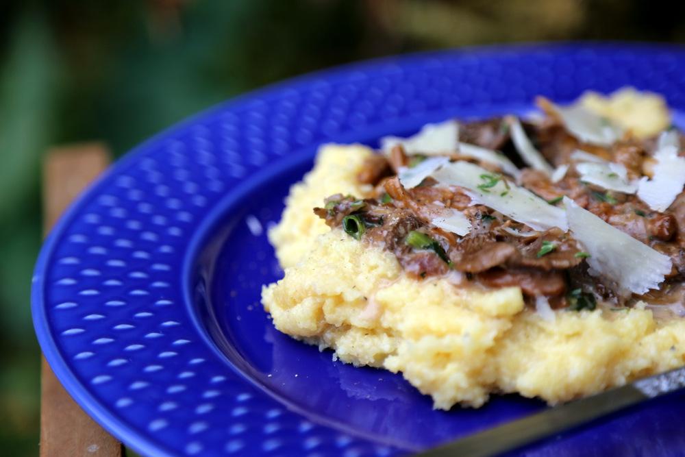 krémová polenta z trouby servírovaná s houbovým ragů s portským vínem a parmezánem
