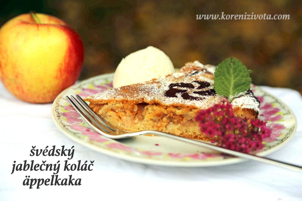 švédský jablečný koláč äppelkaka s tenkou krustou na povrchu; tradičně se ve Švédsku podává s vanilkovou zmrzlinou či vanilkovým krémem