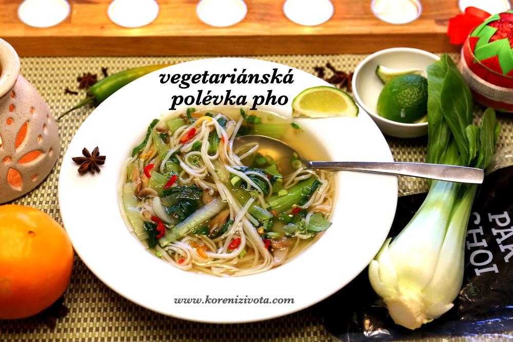 vegetariánská polévka pho provoní exoticky celý dům
