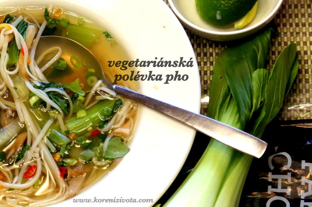 vegetariánská polévka pho, jejímž základem je silný a kořeněný vývar