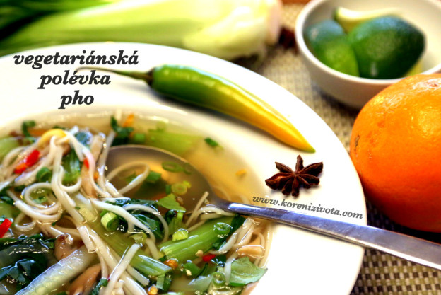 vegetariánská polévka pho
