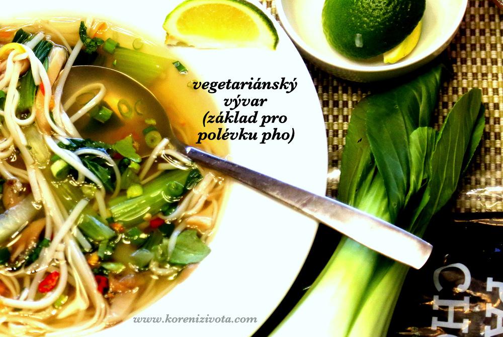 vegetariánský vývar se hodí jako zákald pro asijskou polévku pho