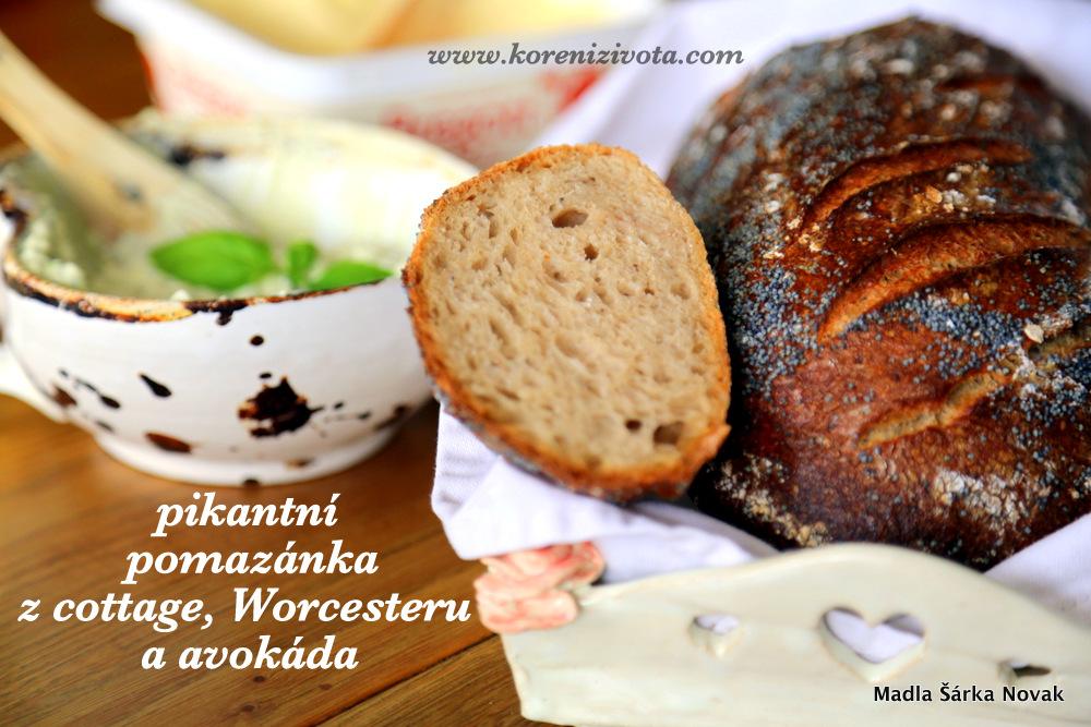 pikantní pomazánka z cottage, Worcesteru a avokáda se u nás podává s čerstvým kváskovým chlebem (z mateřského těsta)
