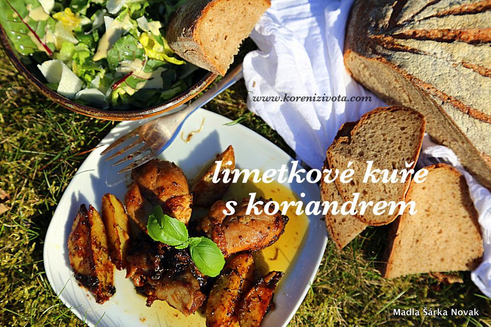 Limetkové kuře s koriandrem s kouskem domácího chleba a salátem