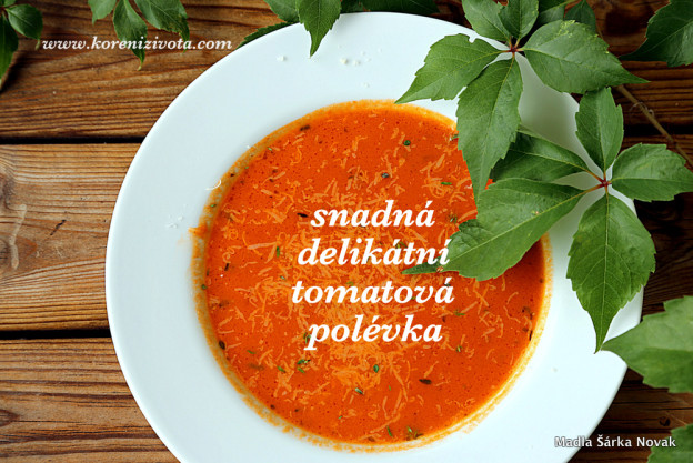 Snadná delikátní tomatová polévka s trochou čerstvě strouhaného parmezánu na vrch jako bonus ;-)