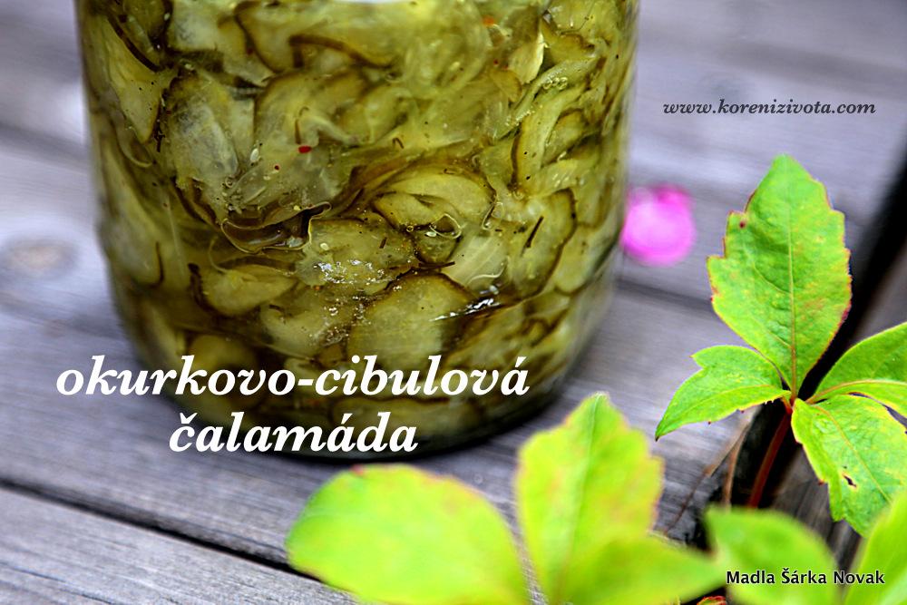 okurkovo-cibulová čalamáda