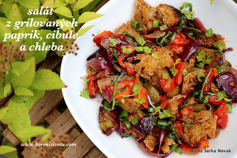 Salát z grilovaných paprik, cibule a chleba
