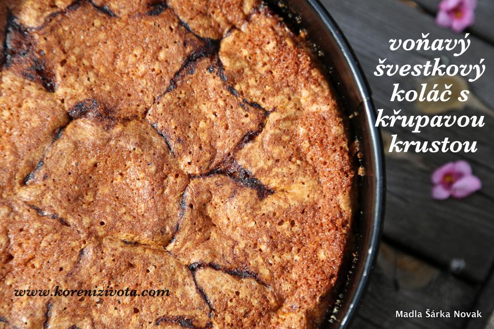 švestky se krásně ponořily do těsta a na povrchu zkaramelizoval cukr se skořicí do křupavé krusty