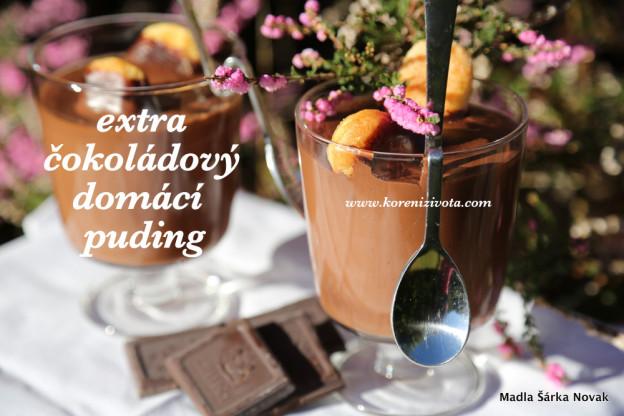 Extra čokoládový domácí puding