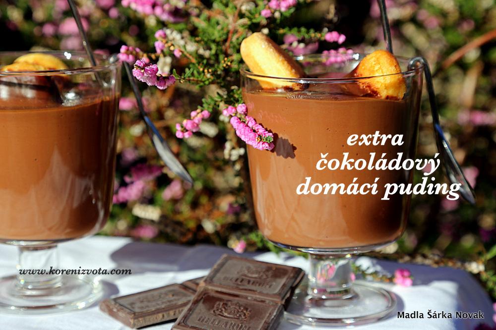 Extra čokoládový domácí puding je plný chutě čokolády; pokud přidáte lžičku rozpustná kávy, je to ještě výraznější