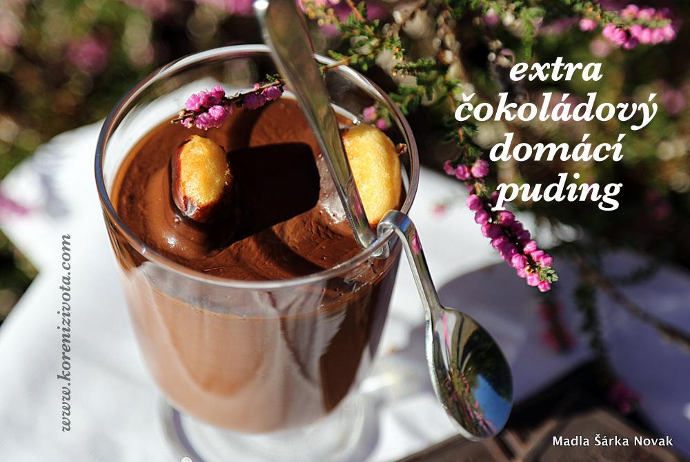 Extra čokoládový domácí puding třeba s cukrářskými piškoty jako bonus navíc ;-)