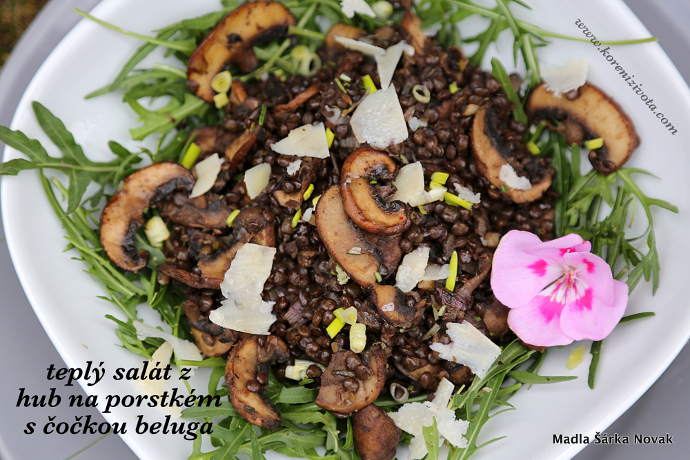 Teplý salát z hub na portském s beluga čočkou