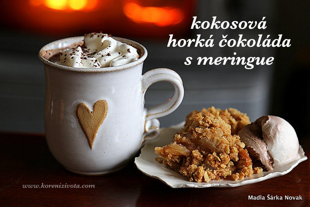 Kokosová horká čokoláda s meringue, jablečný crumble se zmrzlinou.... ;-)