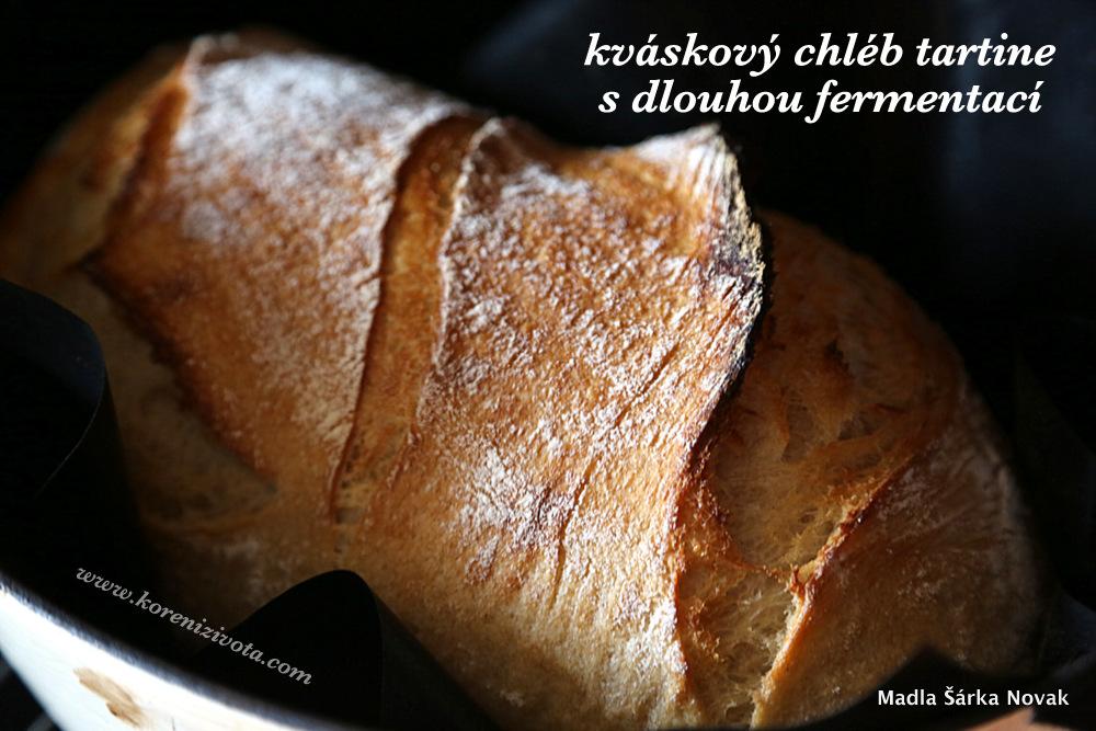 Kváskový chleba tartine s dlouhou fermentací po sundání poklice uprostřed pečící procesu vás mile překvapí