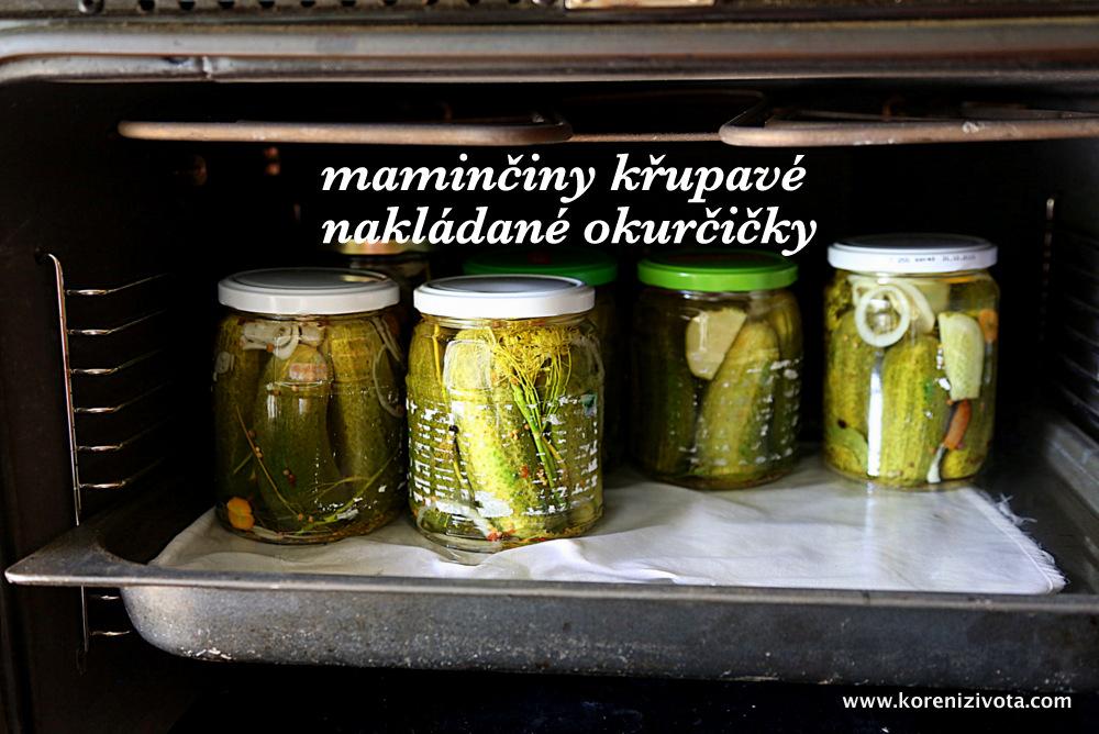 maminčiny křupavé nakládané okurčičky