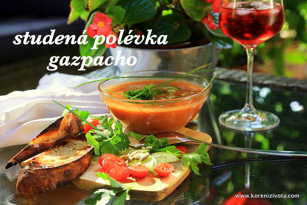 studená polévka gazpacho, chladivá a osvěžující v úmorných letních vedrech